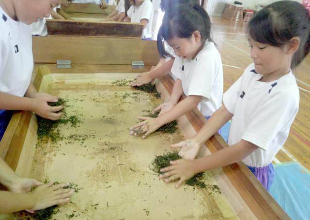 愛鷹小学校三年生を対象に『手揉み茶体験教室』