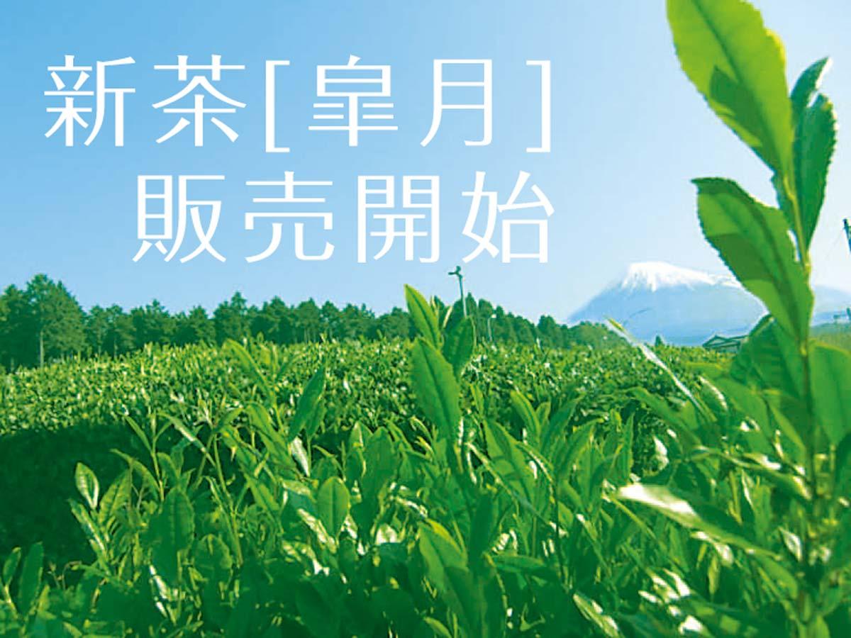 2015年の新茶 皐月 販売開始です!